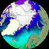 Sea Ice Navigation